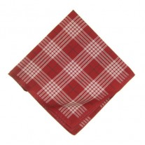 Fox and Luther Red and White Cotton Pocket Square