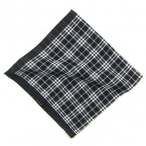 Fox and Luther Simple Check Designer Cotton Handkerchief
