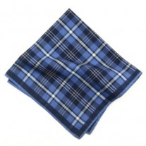 Fox and Luther Feeling Blue Cotton Pocket Square