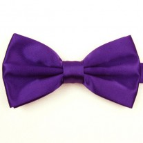 Fox and Luther Purple Bow Tie