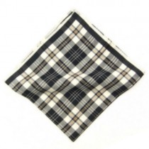Regal Check Pocket Square